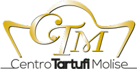 ctm-logo-m